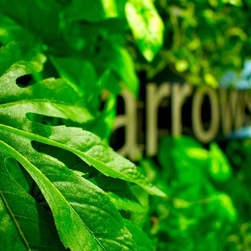 都内のオフィスのマグネット式壁面緑化の事例です。
