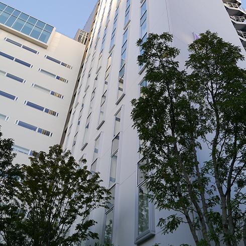 新宿グランベルホテルの植栽管理です。