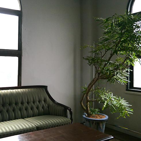 映画撮影用のグリーン使用例です。