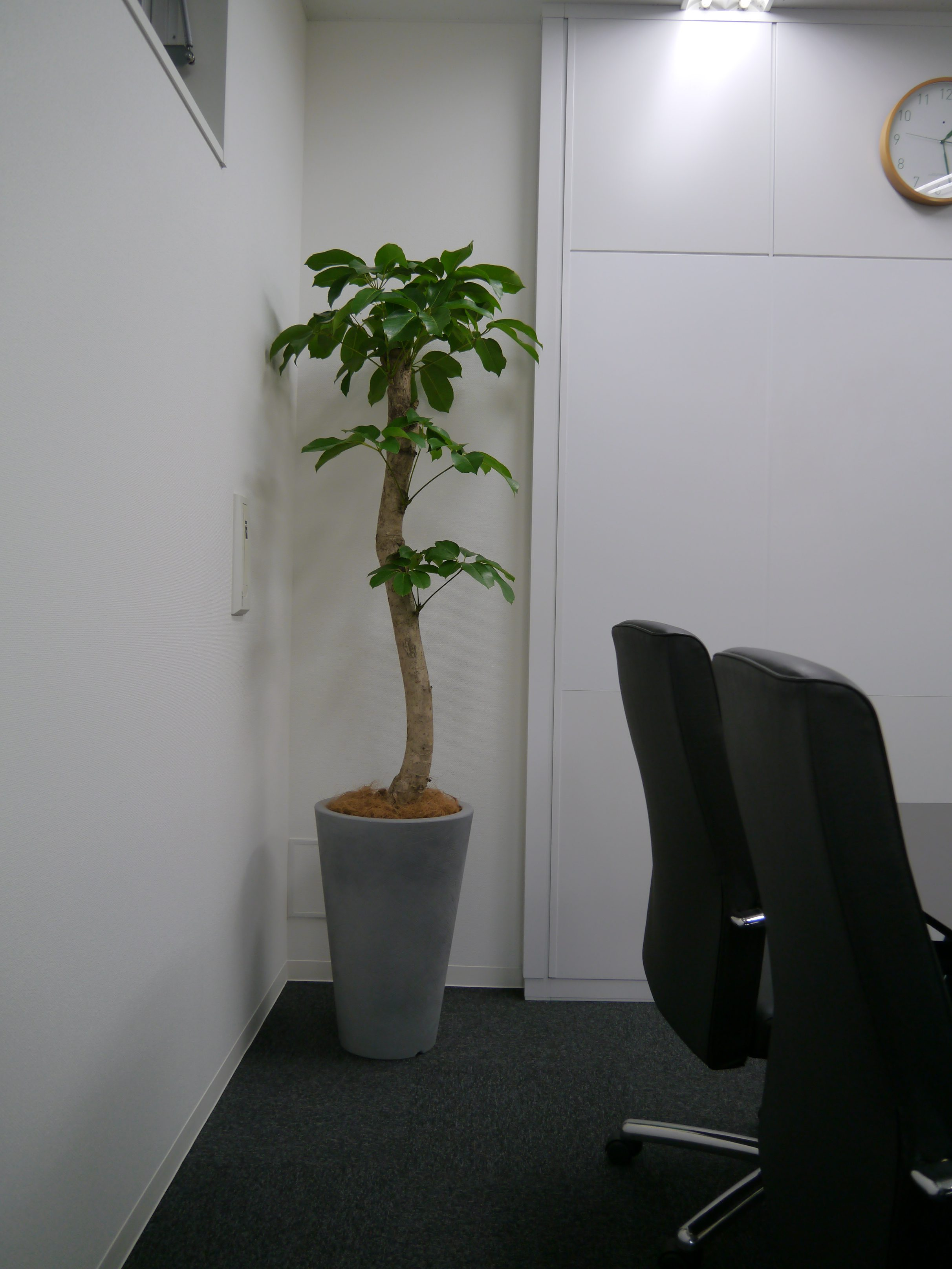 OFFICE@ PLUS ONE   SOLUTIONS4