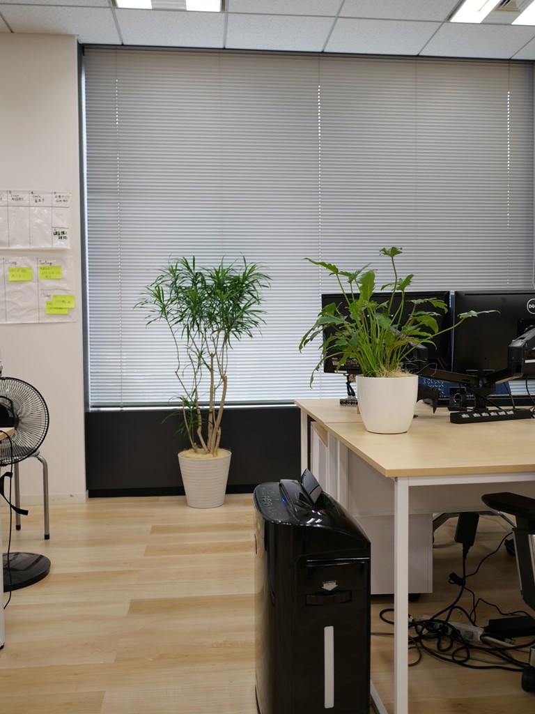 OFFICE@Lifebear4