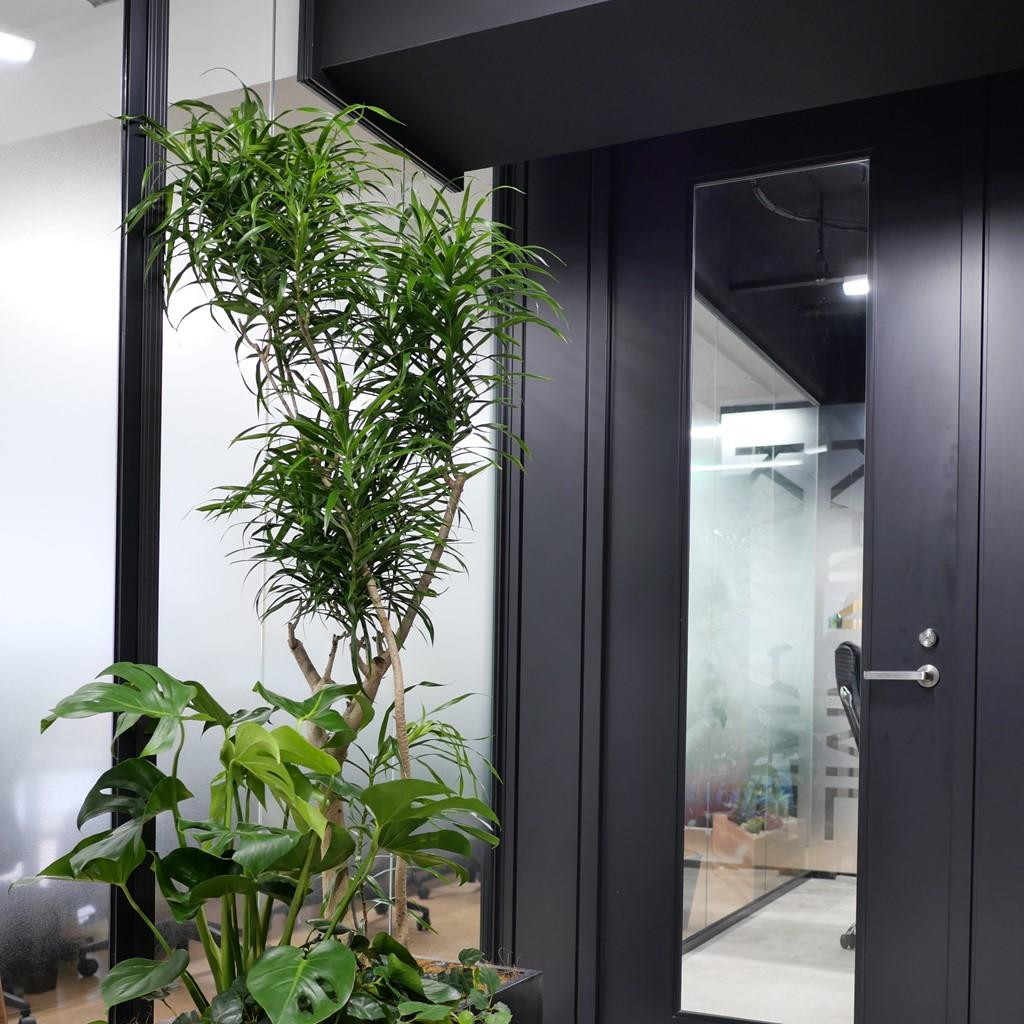 日本橋オフィスの事例です。