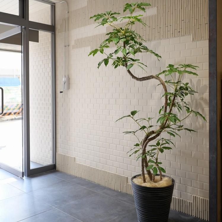 横浜のオフィス事例です。