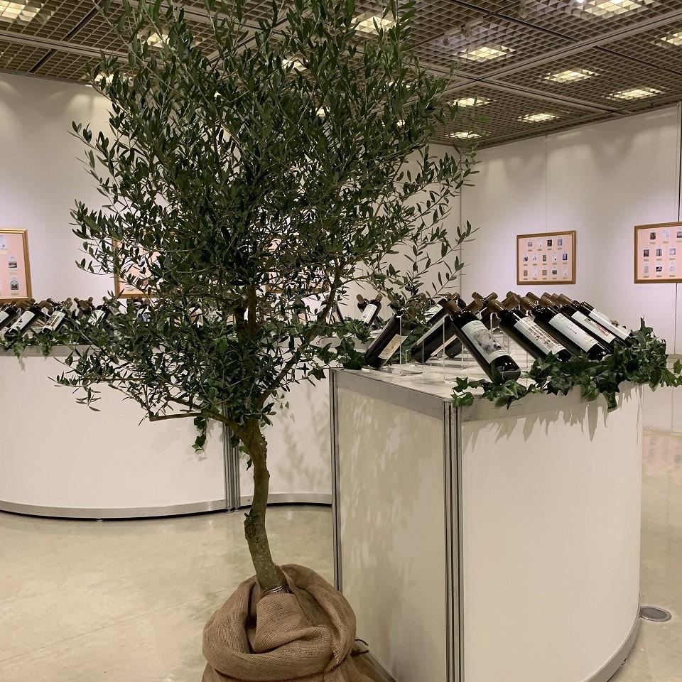 日本イタリア国際交流芸術展事例です。